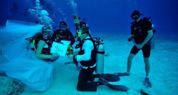 scuba wedding melbourne